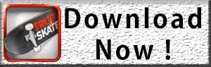 Download True skate apk