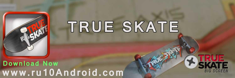 true skate banner