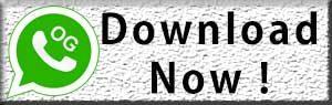 OGWhatsApp Download
