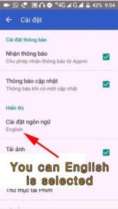 appvn settings